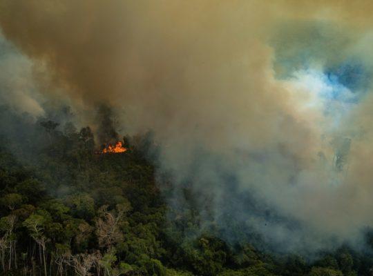 Amazon rainforest fire, 2019. Image (c) Greenpeace